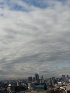20140109_114443.jpg