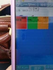 DSC_0969.JPG